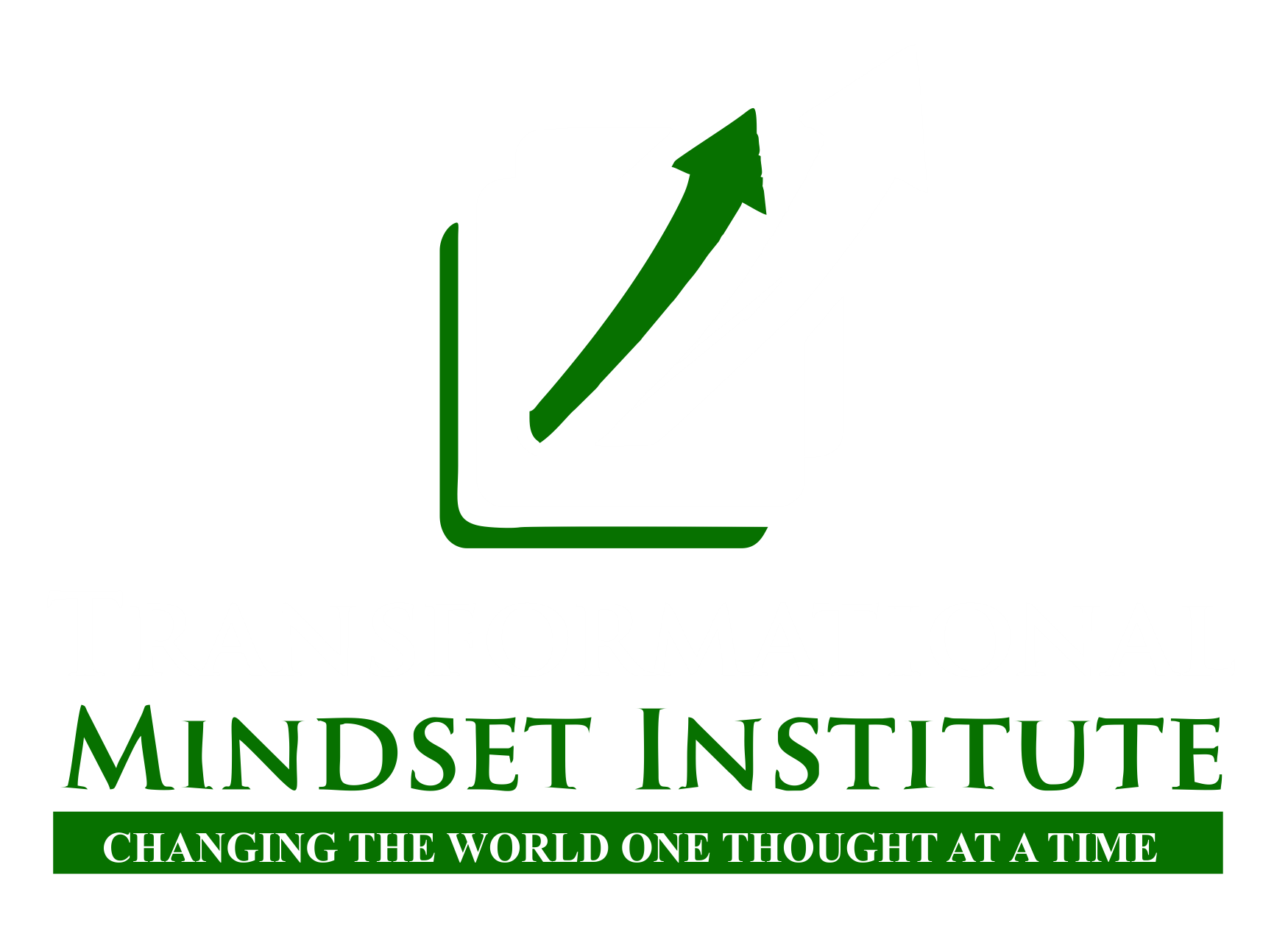 Transformational Mindset Institute